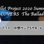 【レポ】ハロコン2020夏 ~ Cチーム ~【7.11】